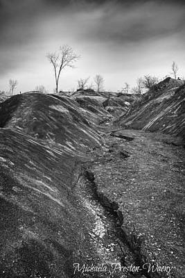 Poster featuring the photograph Badlands 3 by Michaela Preston