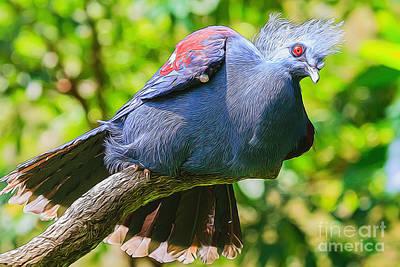 Balanced Pigeon Poster