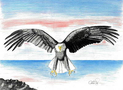 Poster featuring the drawing Bald Eagle by David Jackson