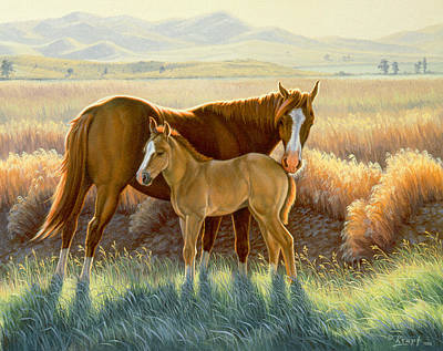 Bald-faced Sorrel And Colt Poster by Paul Krapf