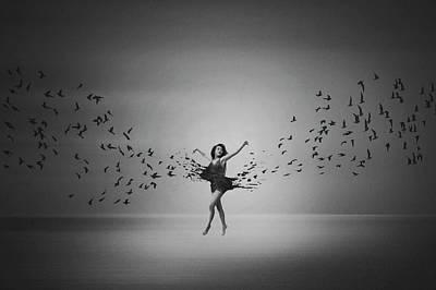 Ballerina Flight Of Birds Poster
