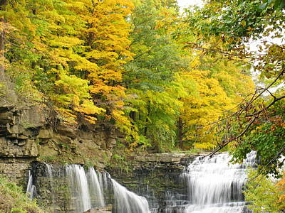 Balls Falls In Autumn Color Poster