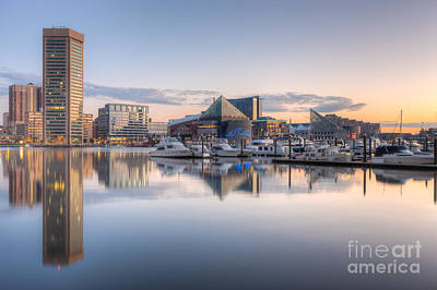 Baltimore Inner Harbor Skyline At Dawn II Poster by Clarence Holmes