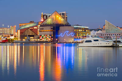 Baltimore National Aquarium At Twilight I Poster by Clarence Holmes