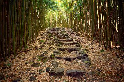 Bamboo Trail Poster by Jen Morrison