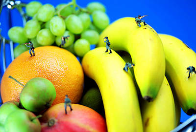 Band Of Brothers Among Fruits Jungle Little People On Food Poster by Paul Ge