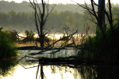 Banner Marsh Spring Poster by Kimberleigh Ladd