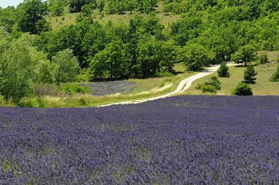 Banon, Provence, France Poster
