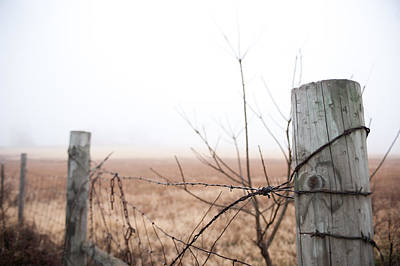 Barbed Wire Fence In The Fog Poster