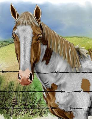 Barbed Wire Horse Poster
