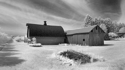 Barn And Grove On Hwy Z Poster