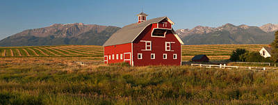 Barn In A Field With A Wallowa Poster by Panoramic Images