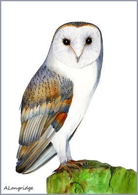 Barn Owl Poster by Alison Langridge