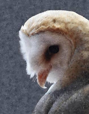 Barn Owl Painterly Poster