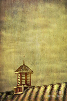 Barn Rooftop With Weather Vane Poster by Birgit Tyrrell