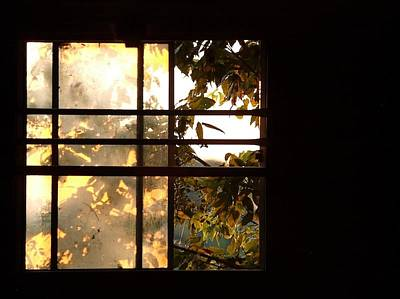 Barn Window Poster by Daniel Kasztelan