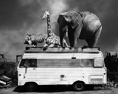 Barnum And Bailey Goes On A Road Trip 5d22705 Black And White Poster by Wingsdomain Art and Photography