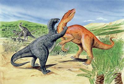 Baryonyx Dinosaur Fighting Poster