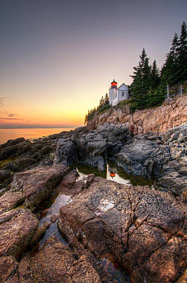 Bass Harbor Lighthouse Reflected In Tidal Pool - Portrait Poster by At Lands End Photography