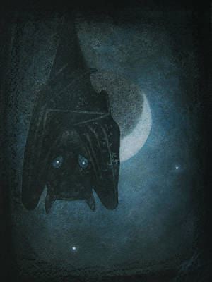 Bat With Crescent Moon Poster