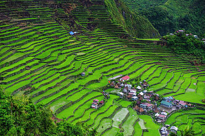 Batad Rice Terraces, World Heritage Poster by Michael Runkel