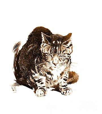 Battleship Cat 1898 Poster by Padre Art