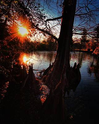 Poster featuring the photograph Bayou Sundown by Robert McCubbin