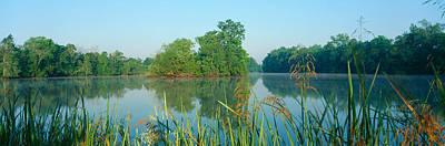 Bayous In Wildlife Refuge Of Lake Poster