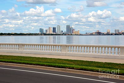 Bayshore Boulevard Poster by Carol Groenen