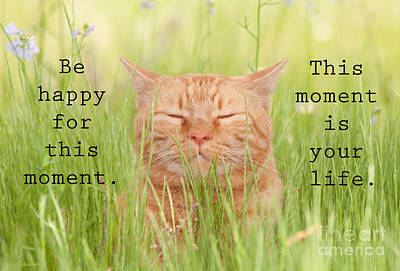 Be Happy For This Moment Poster by Sari ONeal