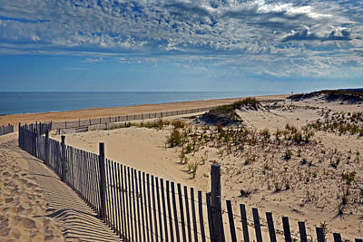 Beach At Cape Henlopen Poster