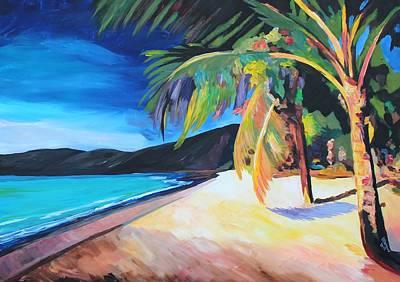 Beach At Magen's Bay St Thomas Usvi  I Poster