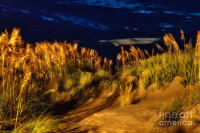 Beach At Night - Outer Banks Pea Island Poster by Dan Carmichael