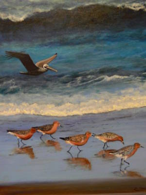 Poster featuring the painting Beach Birds by Catherine Hamill