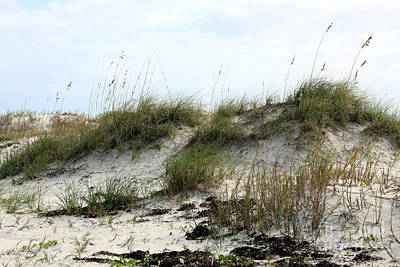 Poster featuring the photograph Beach Dune by Chris Thomas