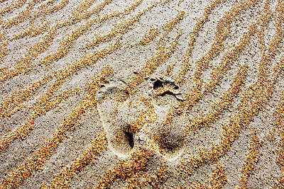 Beach Foot Prints Poster