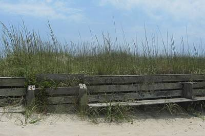 Poster featuring the photograph Beach Grass And Bench  by Cathy Lindsey