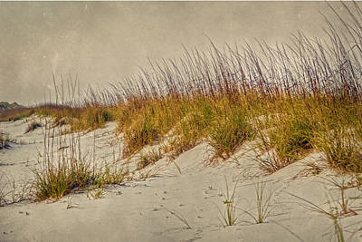 Poster featuring the photograph Beach Grass And Sugar Sand by Judy Hall-Folde