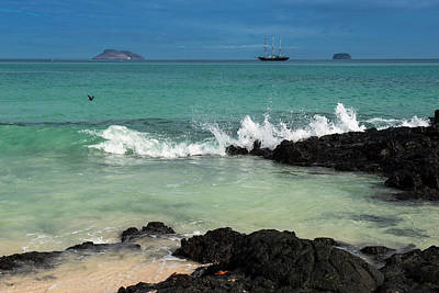 Beach, Las Bachas Santa Cruz Island Poster by Pete Oxford