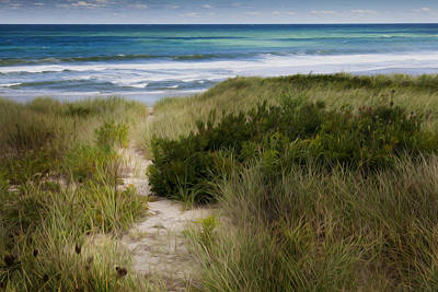 Beach Path Poster by Bill Wakeley