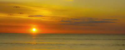 Beach Sunrise Birds Poster by Randy Steele
