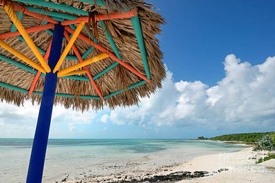 Beach Umbrella At Coco Cay Poster by Amy Cicconi