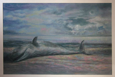 Beached Whale Poster by Paez  Antonio