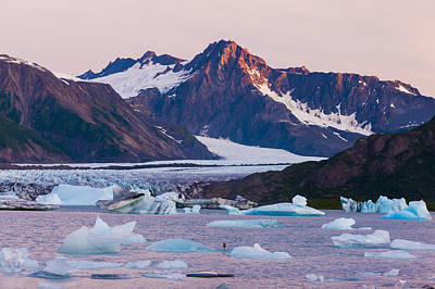 Bear Glacier Lake With Icebergs At Poster by Michael DeYoung
