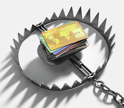 Bear Trap With Credit Cards Poster