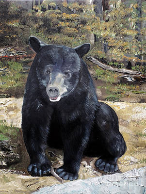 Poster featuring the painting Bear - Wildlife Art - Ursus Americanus by Jan Dappen