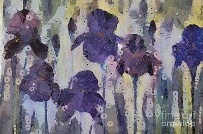 Bearded Irises Poster