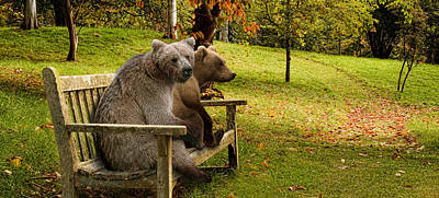 Bears Sitting On A Bench Poster by Panoramic Images