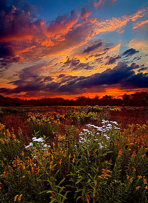Beating Hearts Poster by Phil Koch