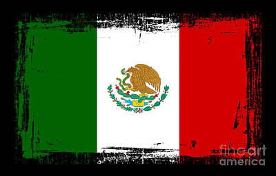 Beautiful Mexico Flag Poster by Pamela Johnson